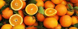 distribution des commandes d'oranges